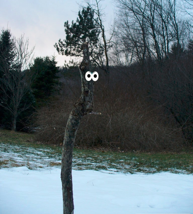 mr stick 14