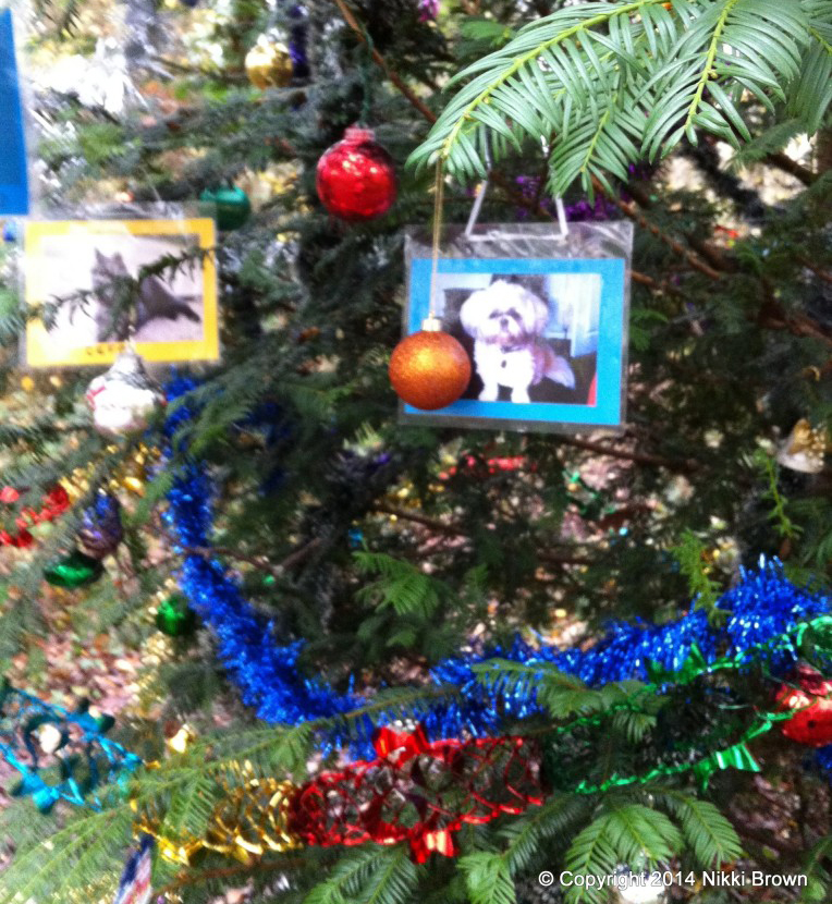 dog tree of remembrance 4