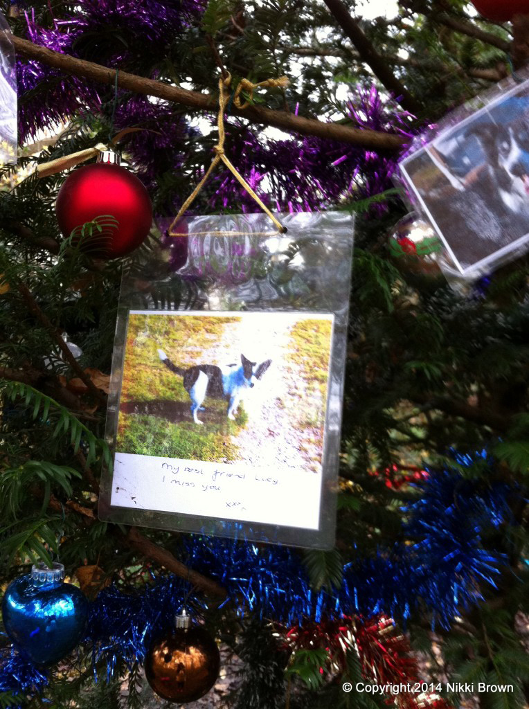 dog tree of remembrance 5