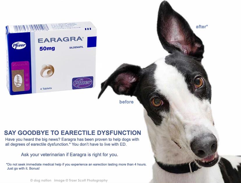 earagra